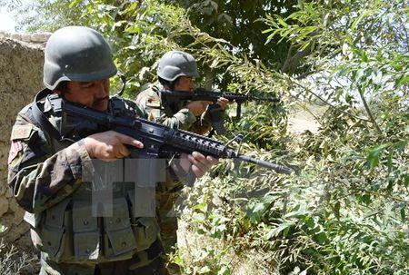 Quan doi Afghanistan tieu diet gan 50 phien quan Taliban - Anh 1