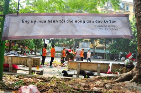"Hanh tim, toi Ly Son thom ngon vuot ngan cay so ""cam chot"" o Ha Noi - Anh 2"