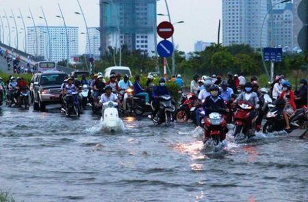 TP.HCM co the doi mat dot trieu cuong cao nhat nam - Anh 1