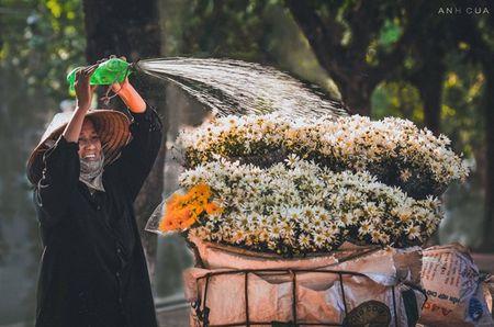 Buc anh an tuong ve nu cuoi cua co ban hoa trong chieu thu - Anh 1