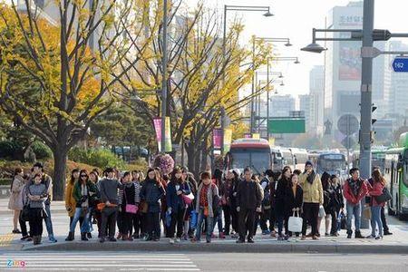 Con duong VIP o thu do Seoul - Anh 10