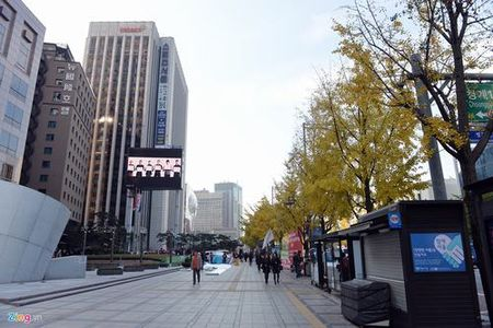 Con duong VIP o thu do Seoul - Anh 5