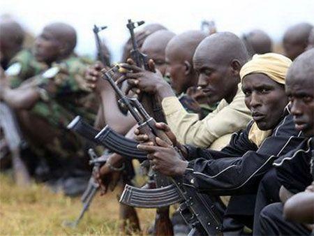 Hoi dong Bao an LHQ tiep tuc duy tri cam van vu khi voi Somalia, Eritrea - Anh 1