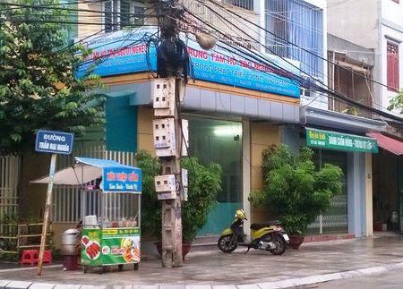 'Trai tim Viet Nam' bong dung cua dong then cai - Anh 2