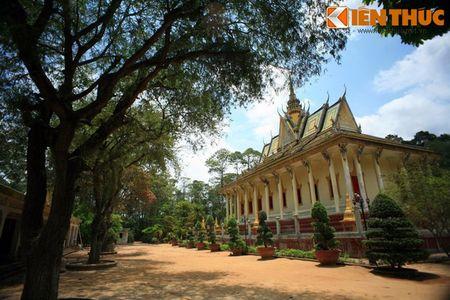 Ngam chua Hang cuc doc cua nguoi Khmer Nam Bo - Anh 16