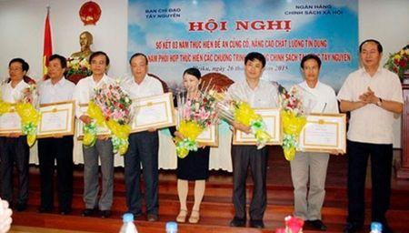Thuc hien hieu qua cac chuong trinh tin dung chinh sach de phat trien kinh te-xa hoi vung Tay Nguyen - Anh 3