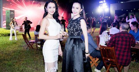 Linh Nga, Vu Ngoc Anh do sac tai su kien - Anh 1