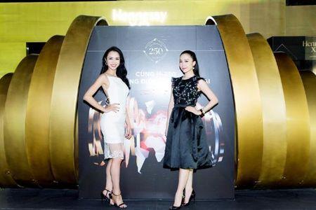 Linh Nga, Vu Ngoc Anh do sac tai su kien - Anh 3