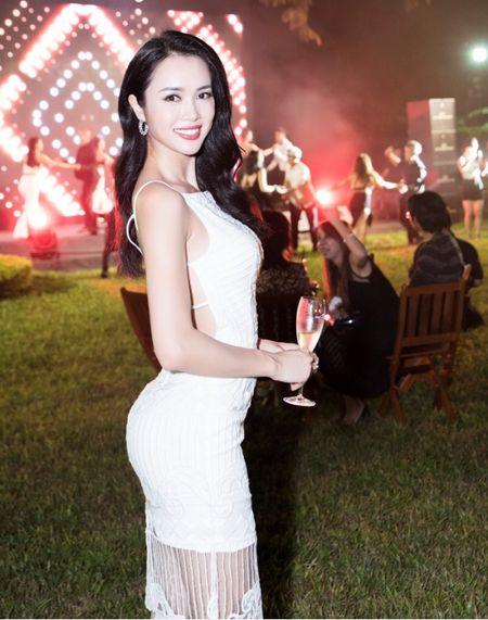 Linh Nga, Vu Ngoc Anh do sac tai su kien - Anh 8