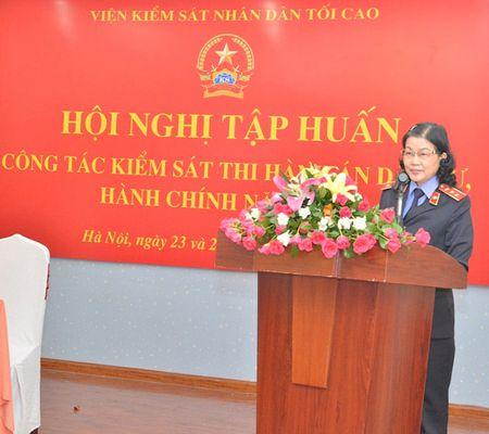 Tap huan cong tac kiem sat thi hanh an dan su, hanh chinh nam 2015 khu vuc phia Bac - Anh 1