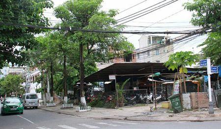 Da Nang: Chinh thuc thu hoi 2 lo dat cap sai vi tri cho con gai Bi thu Tran Tho - Anh 2