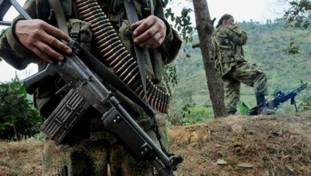 Chinh phu Colombia bac de xuat lap lanh tho hoa binh cua FARC - Anh 1