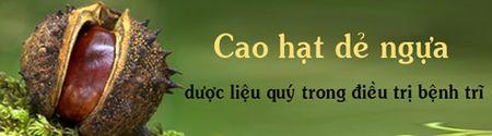 Hat de ngua - bi kip chua benh tri cua nguoi Chau Au. - Anh 3