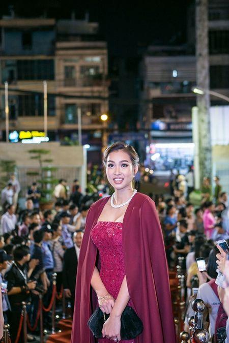Rung sao khoe sac tren tham do Lien hoan phim lan thu 19 - Anh 16