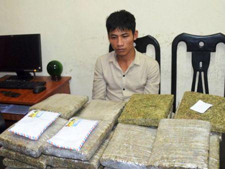 Thanh nien 9X van chuyen 30 banh can sa bi bat - Anh 1