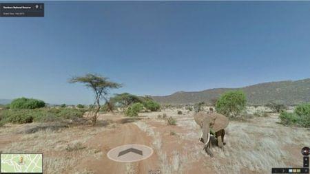 Google Maps co them tinh nang theo doi tac dong cua viec bien doi khi hau - Anh 1