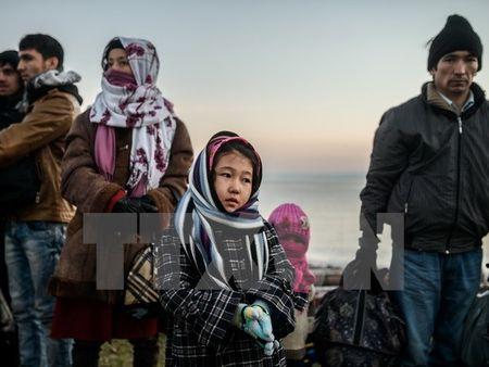 Lanh dao My, Anh thao luan ve Syria va cuoc khung hoang di cu - Anh 1