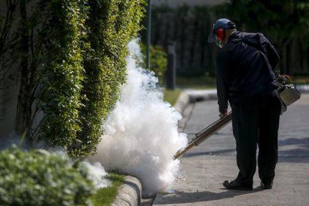 Thai Lan tran an nguoi dan sau khi phat hien them ca nhiem Zika - Anh 1