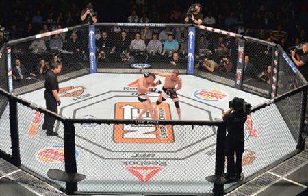 Kinh hai MMA: Danh roi khoi long bat giac - Anh 1