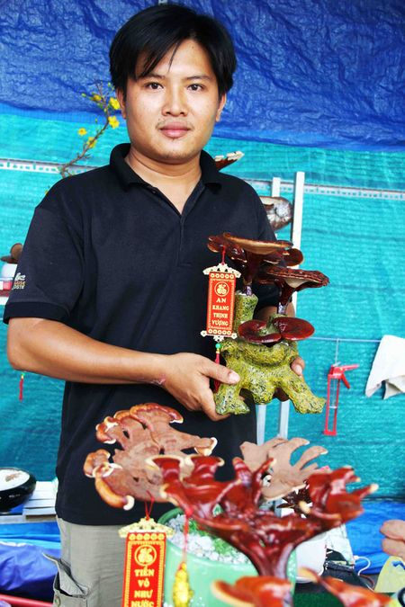"Kieng bonsai linh chi hut khach vi ""doc"", la - Anh 1"