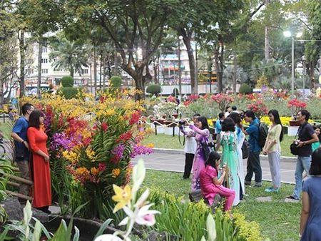 Khai mac Hoi Hoa Xuan TP HCM - Anh 1