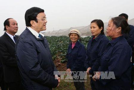 Chu tich nuoc tham va chuc Tet tai Hung Yen, Ha Nam - Anh 1