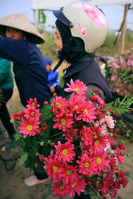 6 cho hoa Tet noi tieng cua Ha Noi - Anh 1