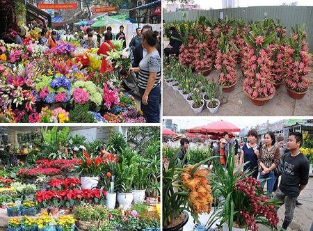6 cho hoa Tet noi tieng cua Ha Noi - Anh 4