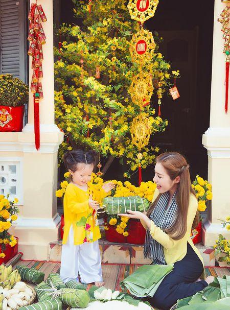 Me con Elly Tran dien ao dai chao xuan nam moi - Anh 9