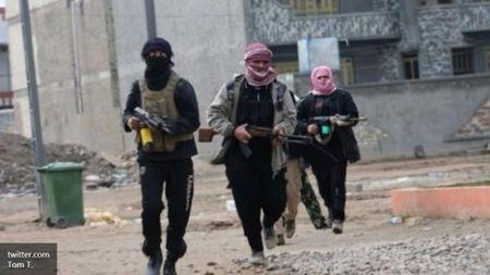 Tinh hinh Syria moi nhat ngay 3/2 - Anh 5