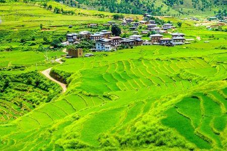 10 ly do khien ban nen mot lan den Bhutan trong 2016 - Anh 5