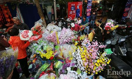 Cho hoa co nhat Ha Thanh nhon nhip ngay cuoi nam - Anh 15