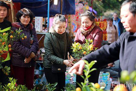 Cho hoa co nhat Ha Thanh nhon nhip ngay cuoi nam - Anh 7