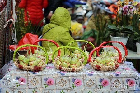 Cho hoa co nhat Ha Thanh nhon nhip ngay cuoi nam - Anh 8