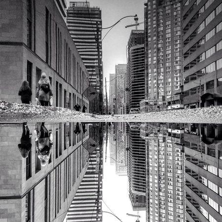 Toronto, noi the gioi phan chieu hinh anh cua chinh minh - Anh 10