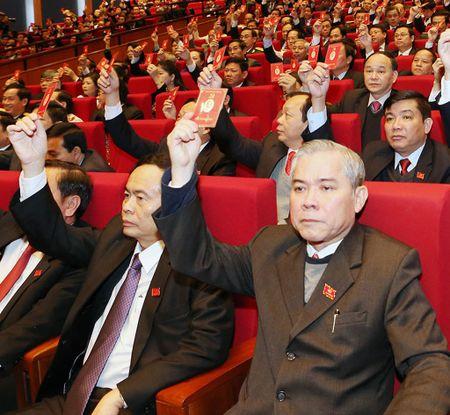 Xay dung, chinh don la van de sinh menh cua Dang - Anh 1
