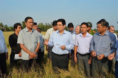 Bo truong Bo NN-PTNT thi sat vung han, man - Anh 1