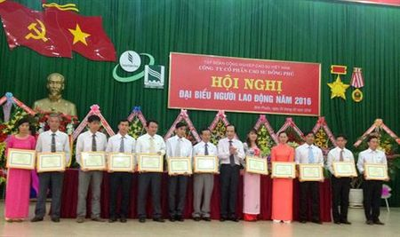 Cong ty CP Cao su Dong Phu: Loi nhuan truoc thue dat tren 180 ty dong - Anh 1