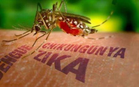 Tong thong Indonesia lo ngai virus Zika lay lan o nuoc nay - Anh 1