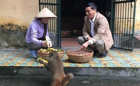 Chuyen khi vang: Vuot gan 200km gap 'chua dao' Khi - Anh 2