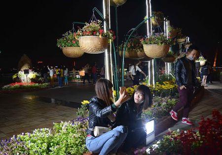 Anh: Duong pho Da Nang dep long lay trong dem Giao thua - Anh 11