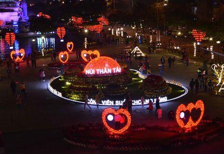 Anh: Duong pho Da Nang dep long lay trong dem Giao thua - Anh 3