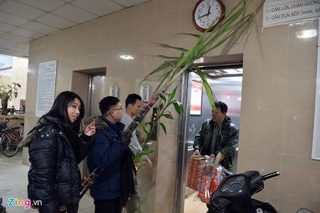 Nguoi dan ca nuoc han hoan chao Binh Than trong phao hoa ruc sang - Anh 9