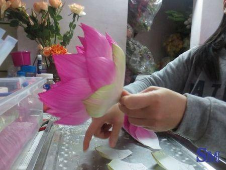 Nguoi giu gin tinh tuy hoa lua truyen thong dat Ha Thanh - Anh 7