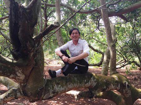 Ly Nha Ky khoe nha dep nhu cung dien, Hoai Linh xan quan treo cay - Anh 3