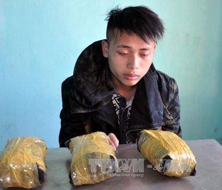Quang Ninh: Bat giu doi tuong van chuyen trai phep 3 kg ma tuy - Anh 1