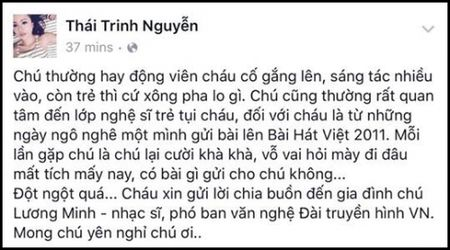 Nghe si Viet tiec thuong nhac si Luong Minh - Anh 3