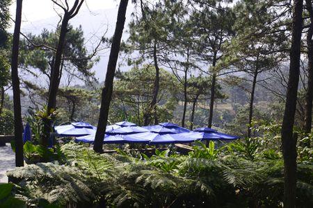 Toan canh resort hoanh trang khong phep o Ba Vi - Anh 11