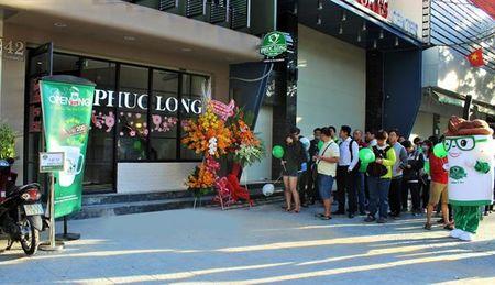 Gioi tre Sai Gon hao huc nhan ly su Phuc Long - Anh 2