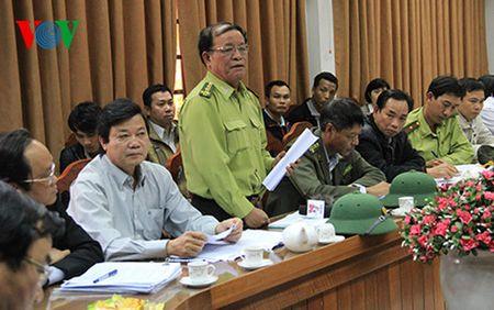 Vu pha rung o Son Tra - Da Nang: Tam dinh chi 5 can bo kiem lam - Anh 2